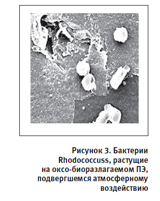 Безимени-10.jpg